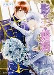影の王の婚姻