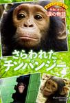 野生どうぶつを救え! 本当にあった涙の物語 さらわれたチンパンジー