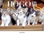 HOGO猫