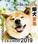 2019年 柴犬まる週めくり卓上カレンダー