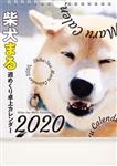 2020年 柴犬まる週めくり卓上カレンダー