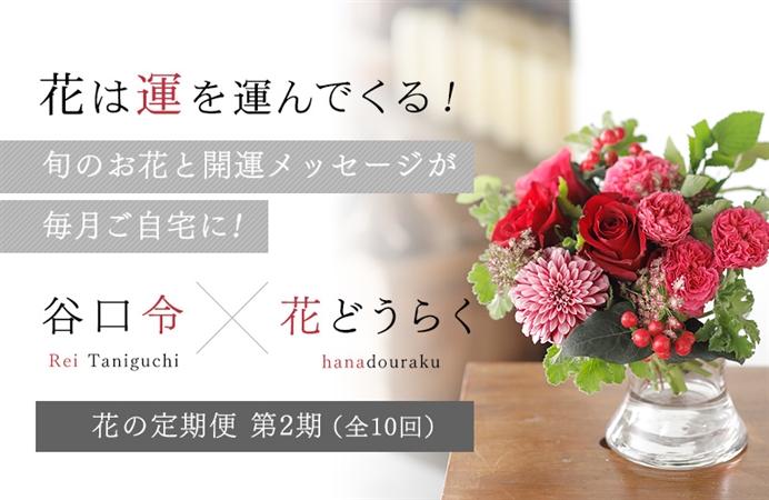 花は運を運んでくる! 旬のお花と開運メッセージが毎月ご自宅に! 谷口令×花どうらく花の定期便 第2期(全10回)