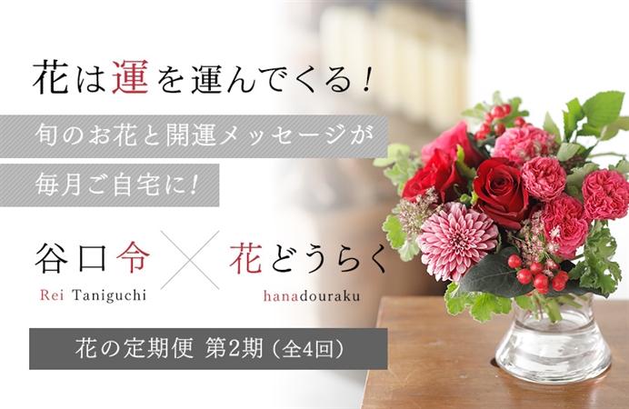 花は運を運んでくる! 旬のお花と開運メッセージが毎月ご自宅に! 谷口令×花どうらく花の定期便 第2期(全4回)